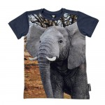 WILD(ワイルド)ARMY ELEPHANT(エレファント ラグランTシャツ)¥7,140KU KID'S STYLE