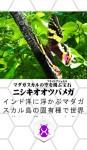 app1508_02d